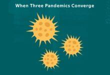 Image of three virus molecules