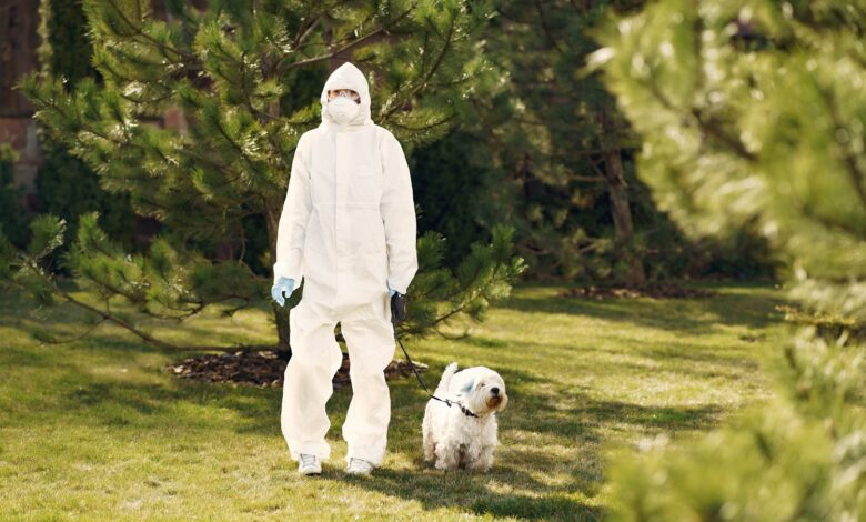 Woman in protective suit walks dog