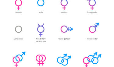 Chart showing different types of possible genders